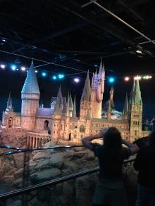 Amazing Castle Model